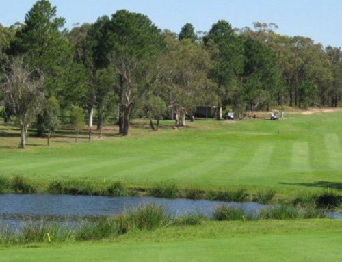Nearby Morisset Country Club for Golf and Bowls